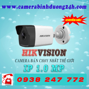 CAMERA IP DS-2CD1001-I