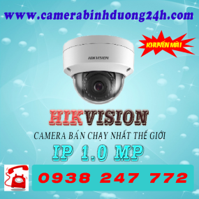 CAMERA IP DS-2CD1101-I
