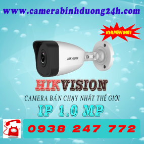 CAMERA IP DS-B3100VN