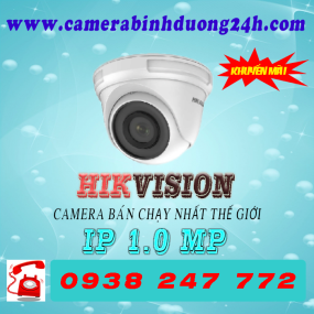CAMERA IP DS-D3100VN
